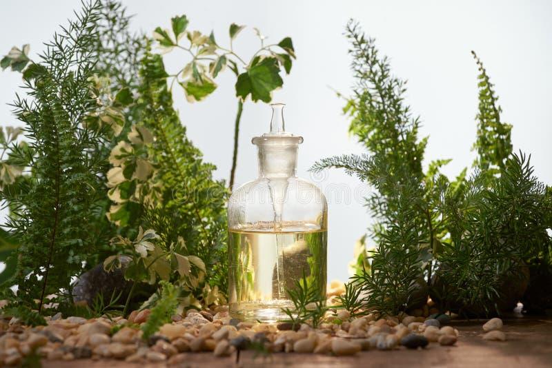 Naturlig organisk botanik och vetenskaplig glasföremål, alternativ henne arkivfoton
