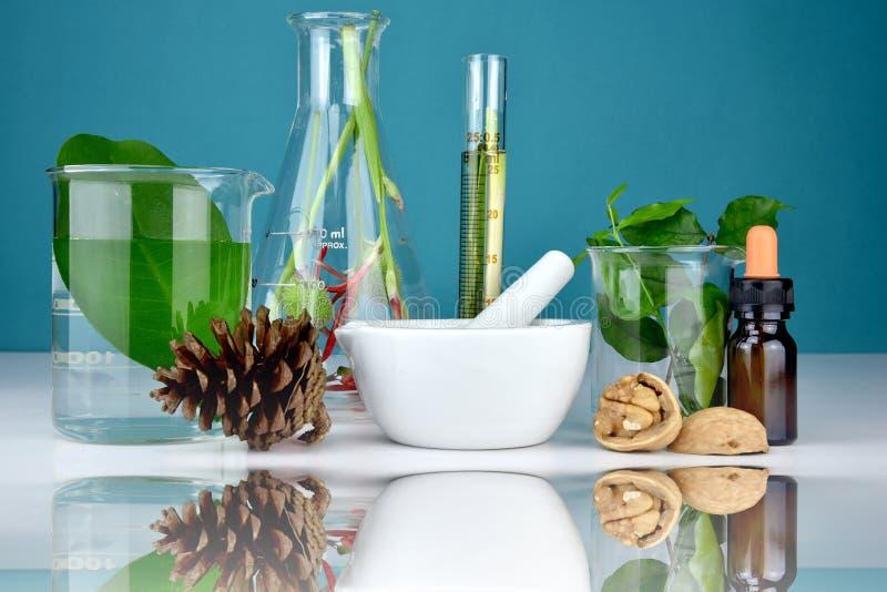 Naturlig organisk medicin och sjukvård, alternativ växtmedicin royaltyfri foto
