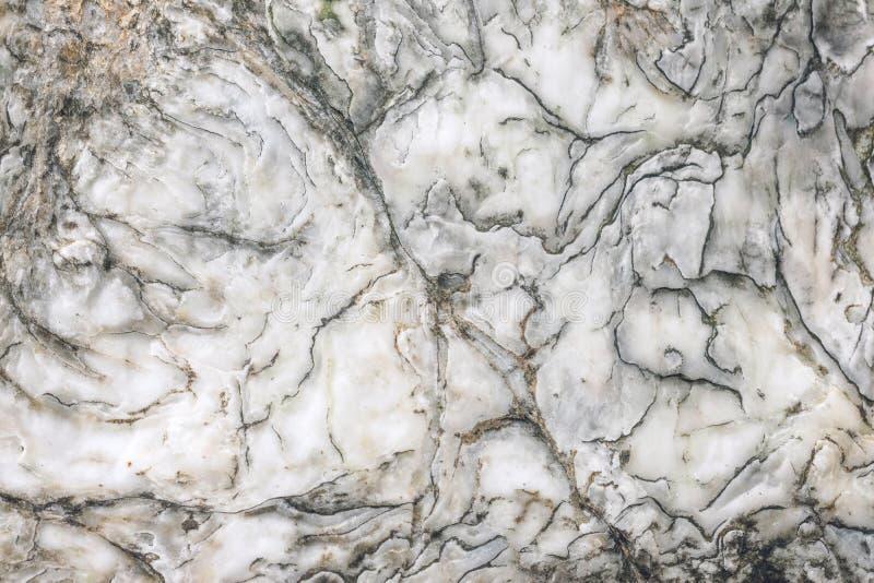 Naturlig r? marmortextur Marmorera tapetbakgrund Vit brun och grå färgstentextur för designmodellkonstverk royaltyfria bilder