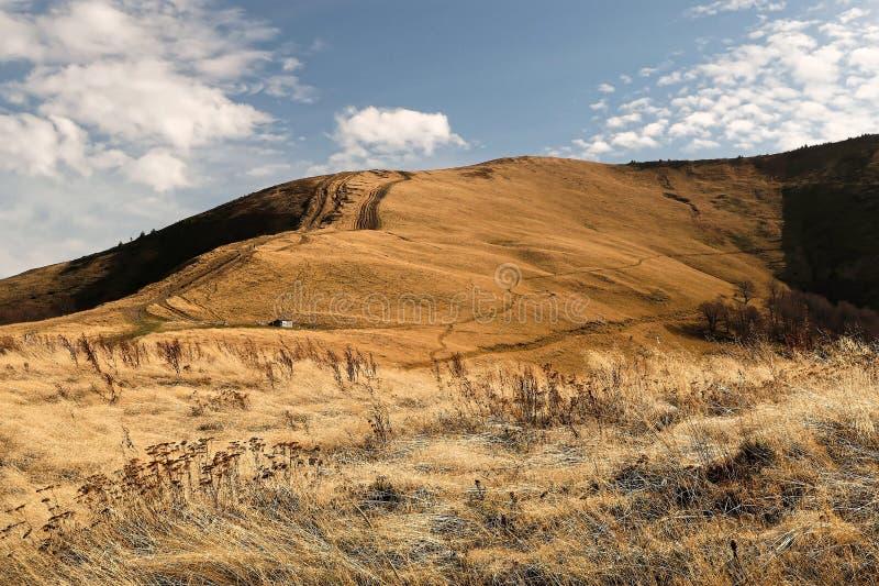 naturlig sammansättning Sikt av bergssidan som täckas med gräs arkivfoto