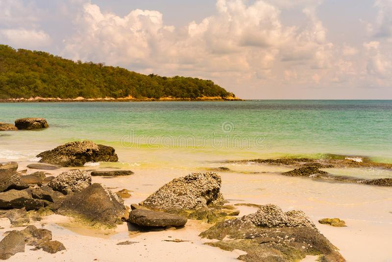 Naturlig seacoasthorisont och sandstrand arkivbilder