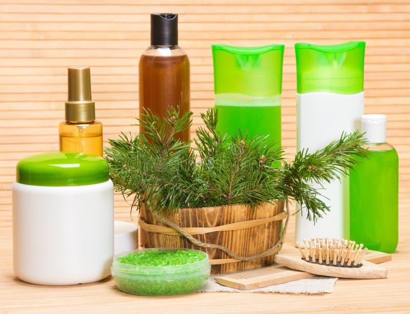 Naturlig skönhetsmedel och tillbehör för håromsorg royaltyfria bilder