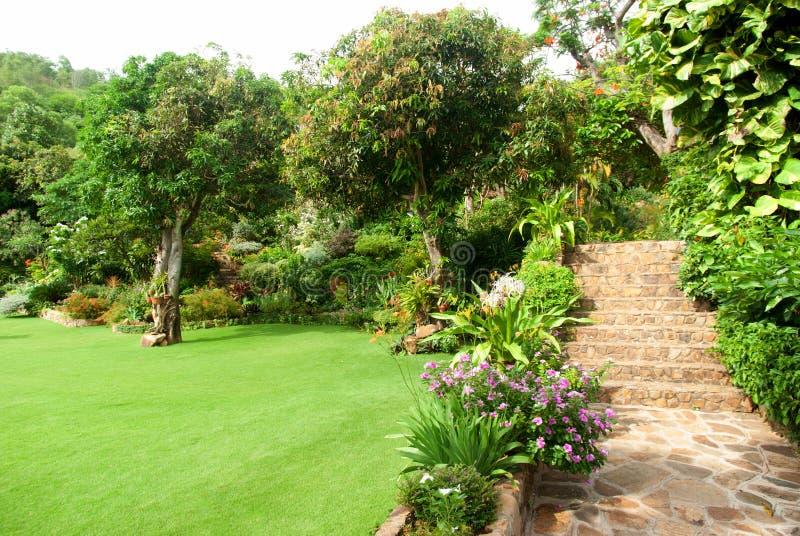 Naturlig sten som landskap i hemträdgård med trappa royaltyfri fotografi