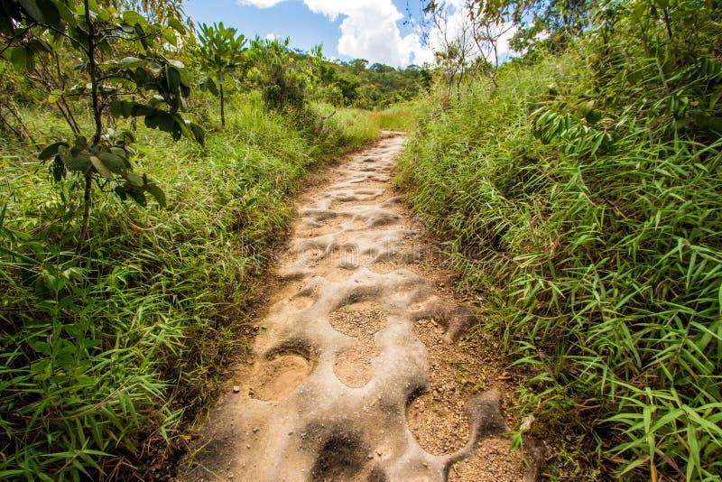 Naturlig stenväg med hål royaltyfri fotografi