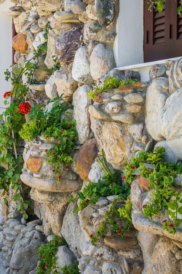 Naturlig stenvägg med växter som växer på den royaltyfri bild