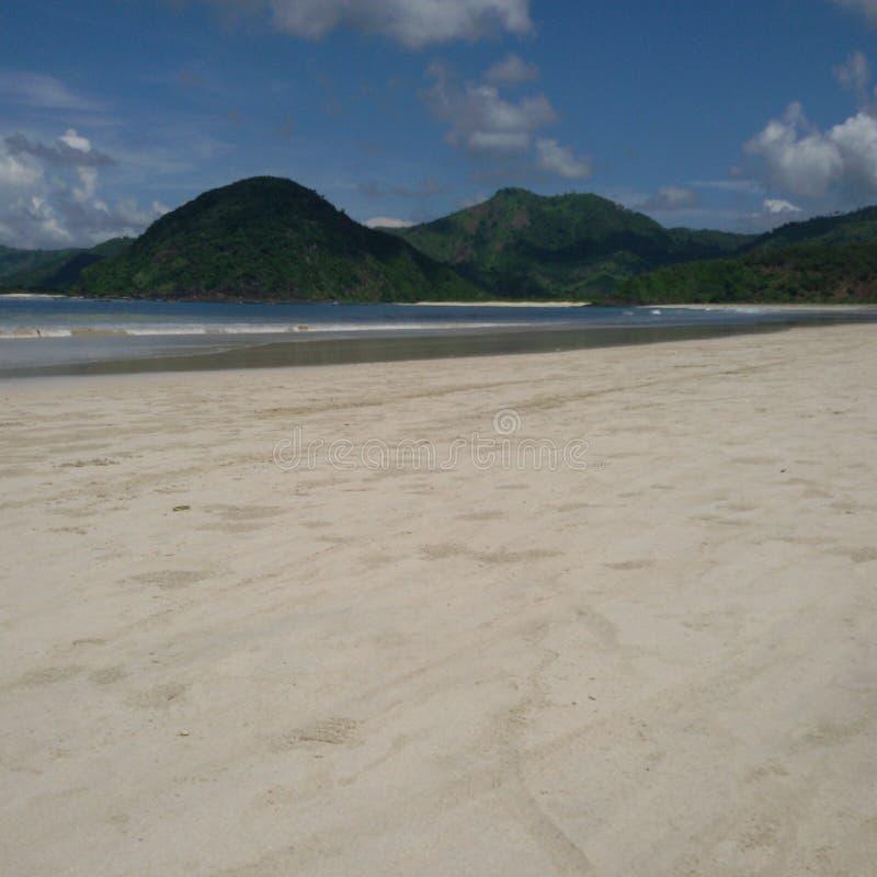 naturlig strand royaltyfri bild