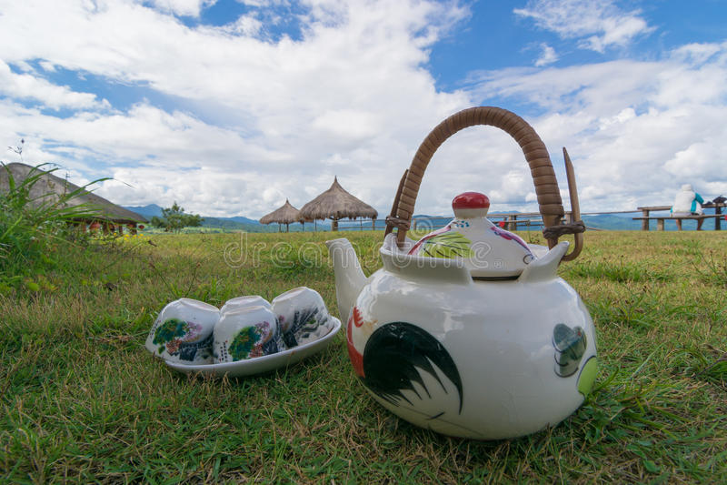 naturlig tea fotografering för bildbyråer