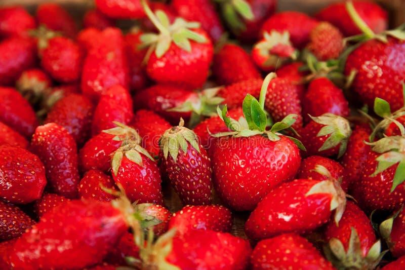 Naturlig textur av mogna jordgubbar Baner av jordgubbar i ett träasknärbild- och kopieringsutrymme fotografering för bildbyråer