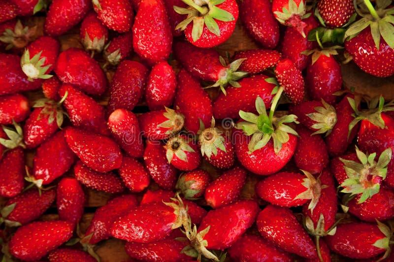 Naturlig textur av mogna jordgubbar Baner av jordgubbar i ett träasknärbild- och kopieringsutrymme arkivbild