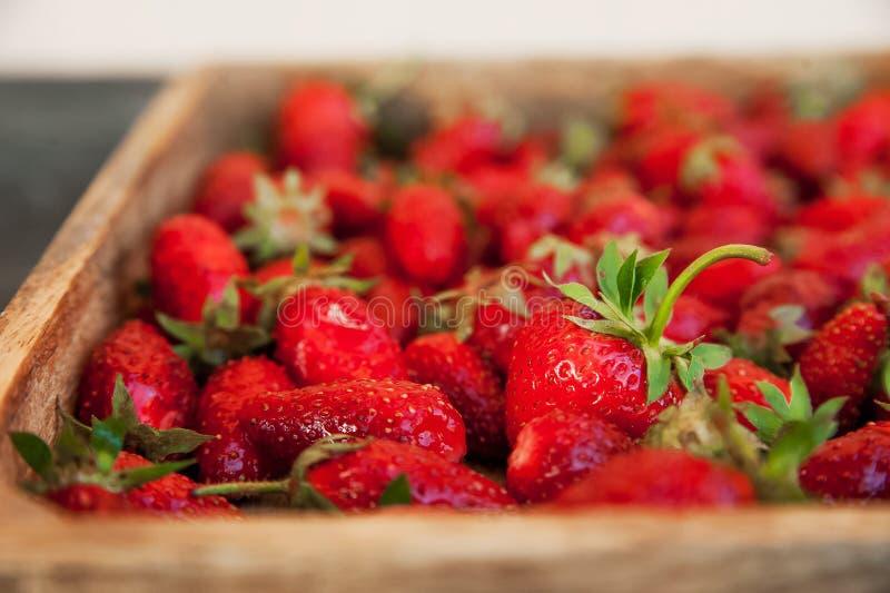 Naturlig textur av mogna jordgubbar Baner av jordgubbar i ett träasknärbild- och kopieringsutrymme arkivfoton