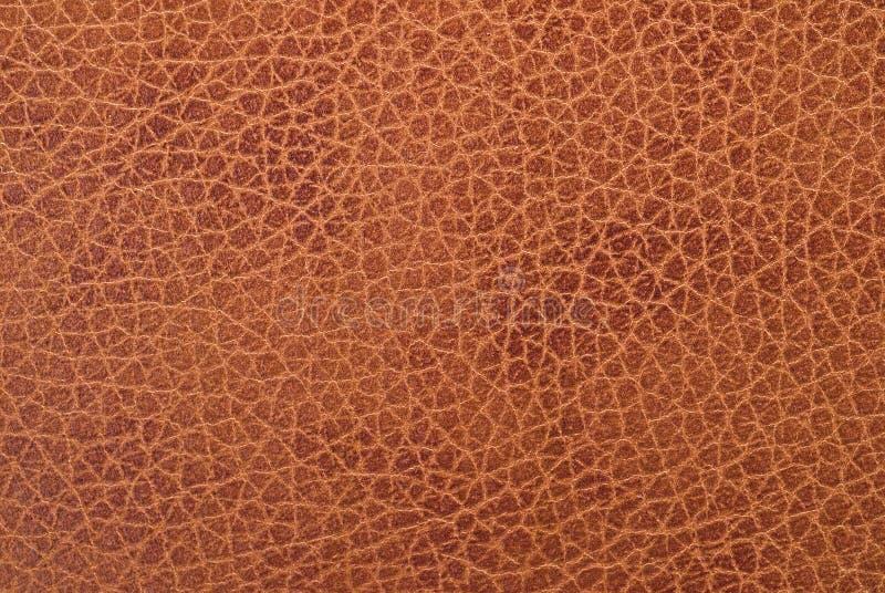 naturlig texturveal för läder royaltyfria foton
