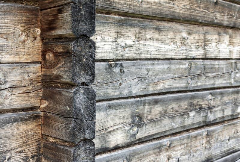 Naturlig träväggbakgrund royaltyfri fotografi
