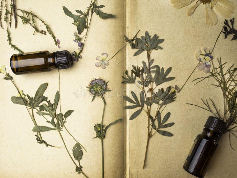 Naturlig växt- medicin med nya örter och blommor, nödvändiga oljor för aromatherapy på pappersbakgrund arkivbilder