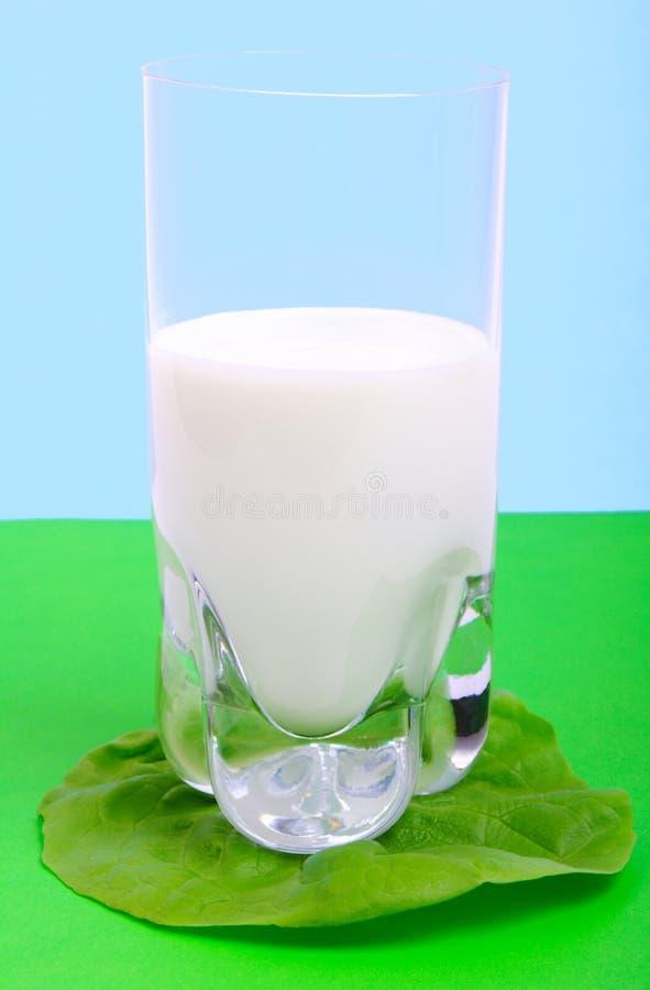 Download Naturlig yoghurt arkivfoto. Bild av kalori, grönsallat - 514648