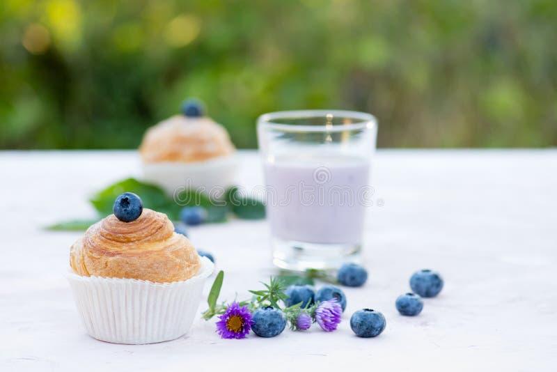Naturlig yoghurt med nya bär och muffin kopiera avstånd arkivbild