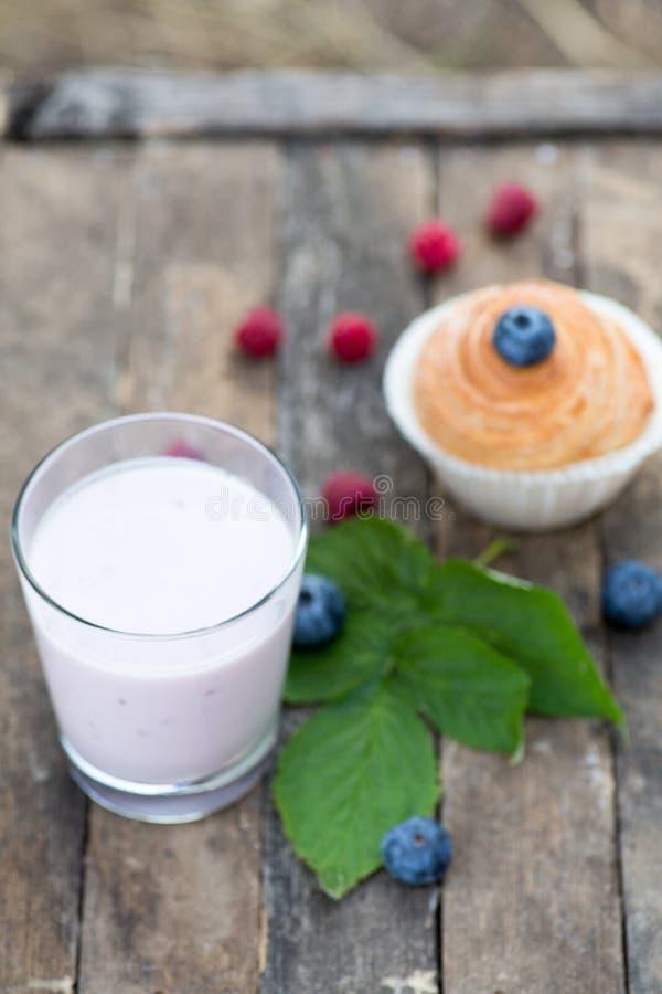 Naturlig yoghurt med nya bär och muffin kopiera avstånd arkivfoto