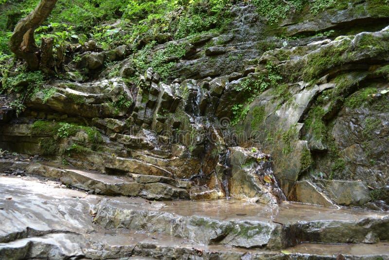 Naturliga bergvattenfall royaltyfria bilder