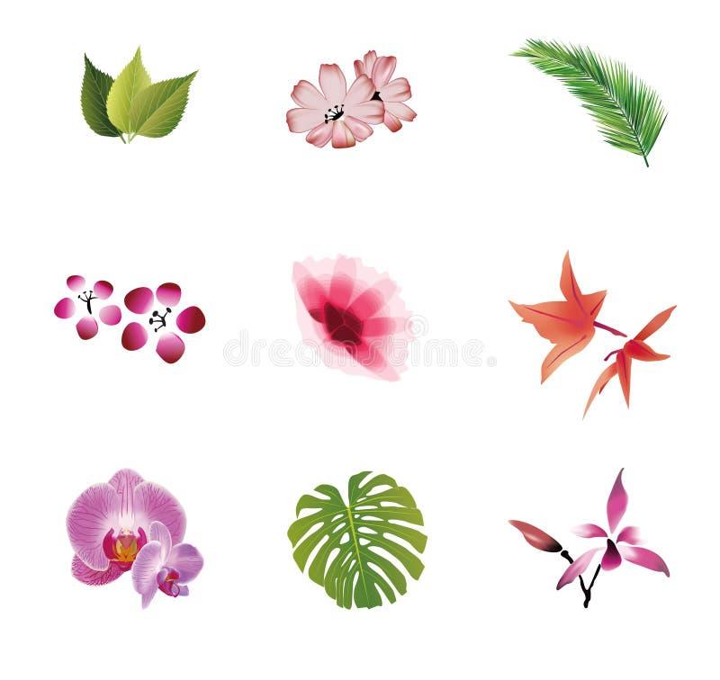 Naturliga beståndsdelar vektor illustrationer