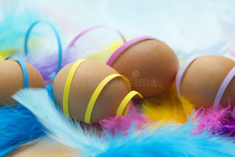 Naturliga easter ägg med färgrika fjädrar och konfettier royaltyfri foto