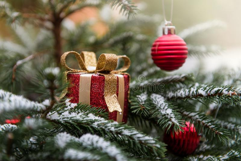Naturliga fruncher för granträd som täckas med snö, julbegrepp royaltyfri bild