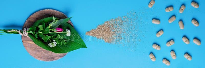 Naturliga grönsakpiller, tillsats, en uppsättning av medicinska örter begreppet av naturlig och grönsakhälsa royaltyfria bilder