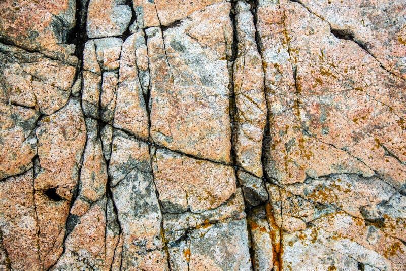 Naturliga granitsprickor vaggar in på Acadianationalparken, USA royaltyfria foton