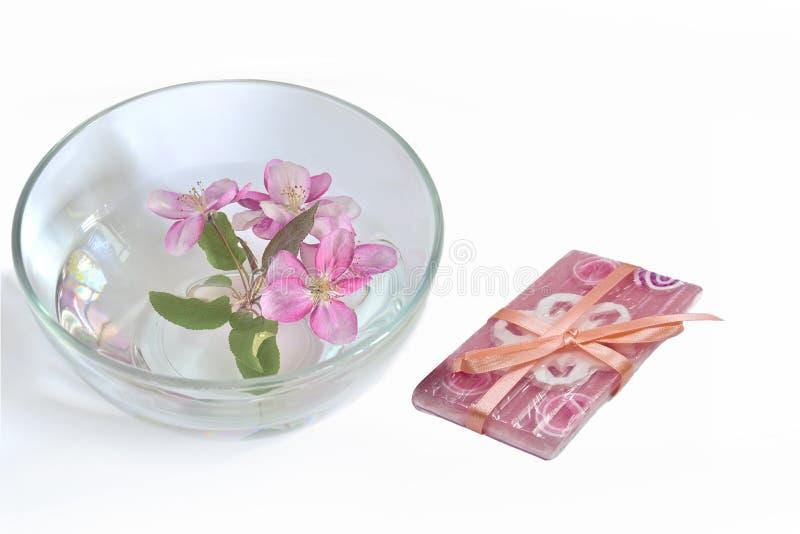 Naturliga handgjorda blom- tvål- och körsbärblom i vattnet royaltyfri foto