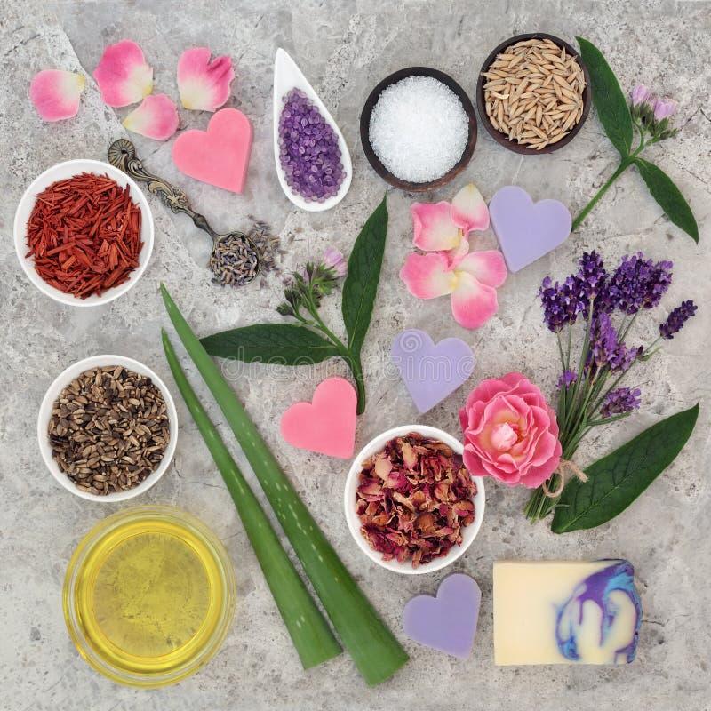 Naturliga ingredienser för hudhälsovård royaltyfri fotografi