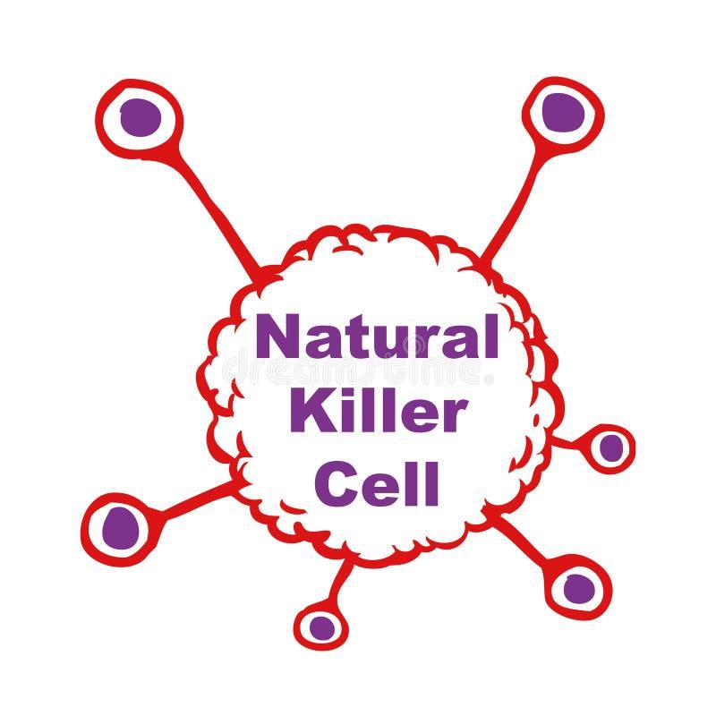 Naturliga mördareceller royaltyfri illustrationer