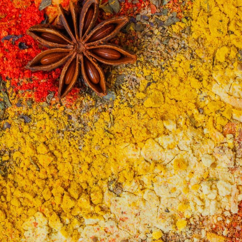 Naturliga organiska kryddor och örter, uppsättning Livlig färgrik färg Matbakgrund med utrymme för din text arkivbilder