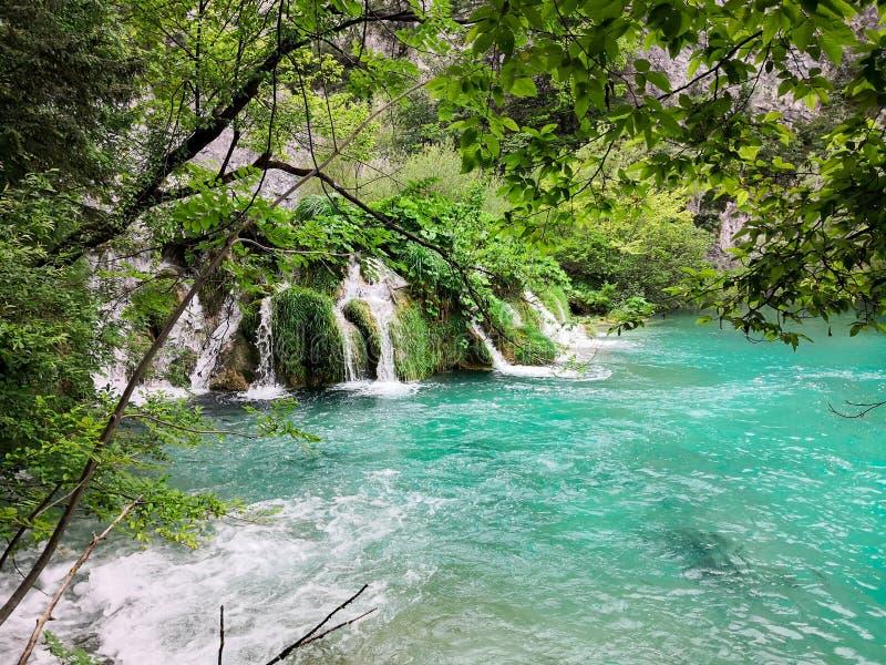 Naturliga Plitvice parkerar arkivbilder