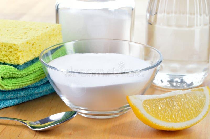 Naturliga rengöringsmedel. Vinäger natriumbikarbonat, saltar och citronen. royaltyfri bild