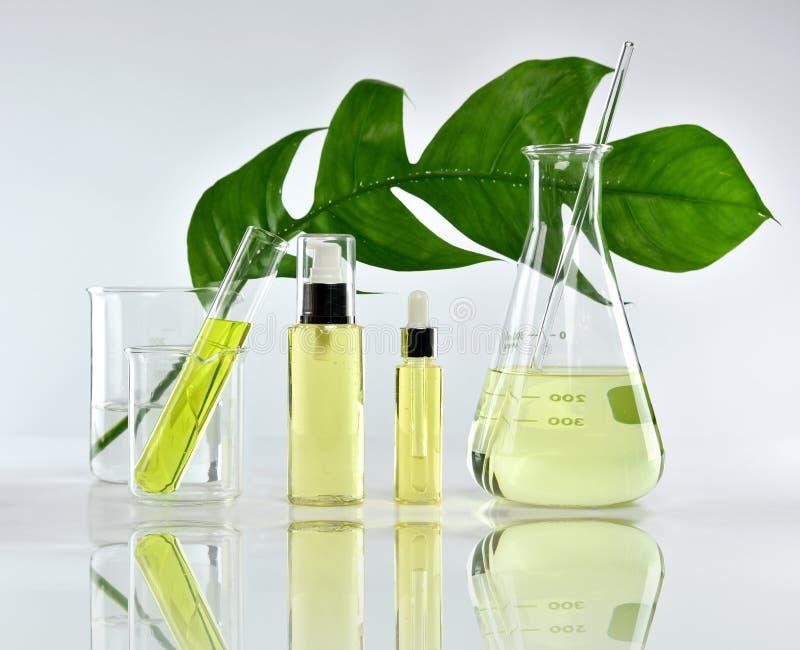 Naturliga skönhetsprodukter för hudomsorg, naturlig organisk botanikextraktion och vetenskaplig glasföremål arkivbild