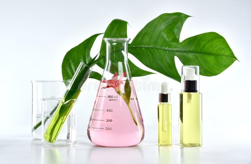 Naturliga skönhetsprodukter för hudomsorg, naturlig organisk botanikextraktion och vetenskaplig glasföremål royaltyfria foton