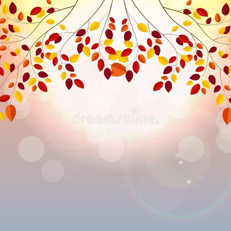 Naturliga Sunny Autumn Leaves Background Vector Illustration vektor illustrationer
