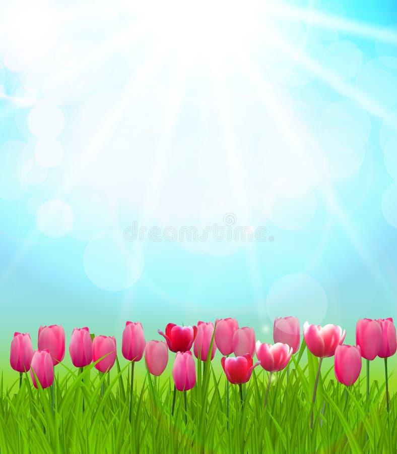 Naturliga Sunny Background Vector Illustration vektor illustrationer