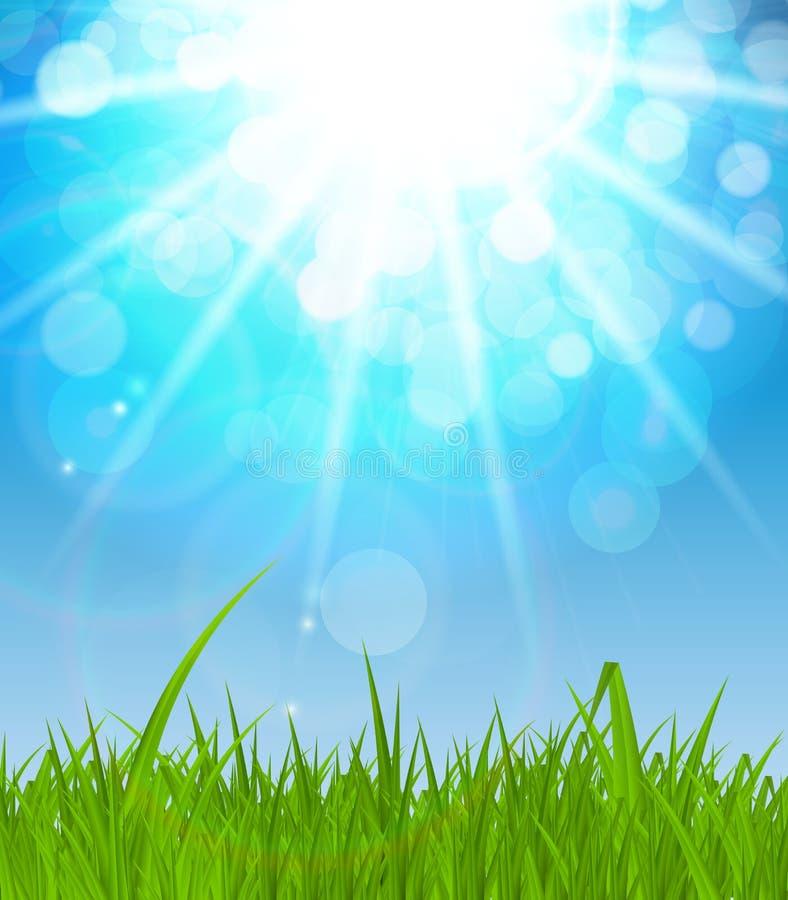 Naturliga Sunny Background Vector Illustration royaltyfri illustrationer