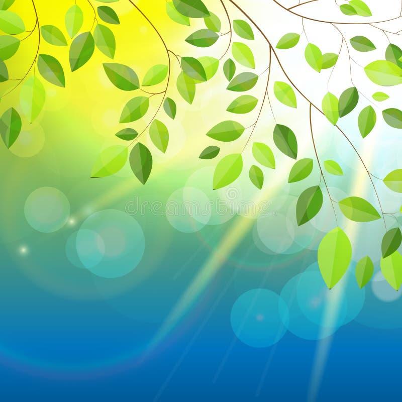 Naturliga Sunny Background Vector Illustration stock illustrationer