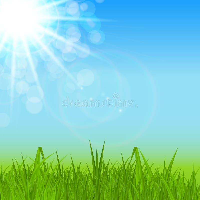 Naturliga Sunny Spring, sommarbakgrund med blå himmel och vektorillustrationen för grönt gräs vektor illustrationer