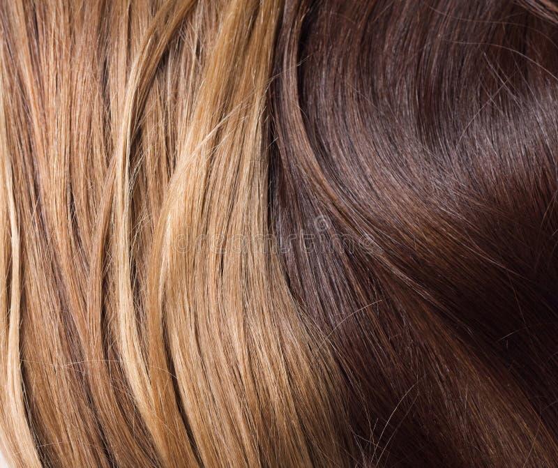 Naturligt blont och brunt hår royaltyfria bilder