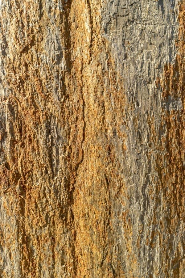 Naturligt kritisera med skuggor av guld- och bruna färger royaltyfri bild