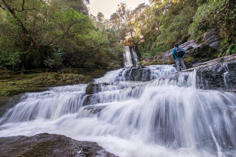 Naturligt landskap av en fotvandrare som framme står av vattenfallet, Nya Zeeland arkivfoto