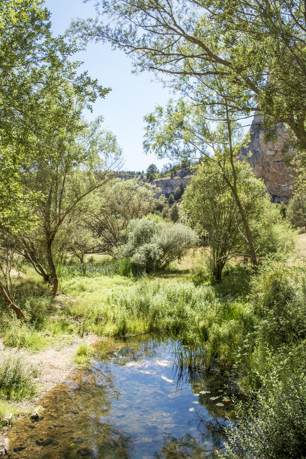 Naturligt landskap av flodkanjonen Lobos, Ucero, Soria, Spanien royaltyfria foton