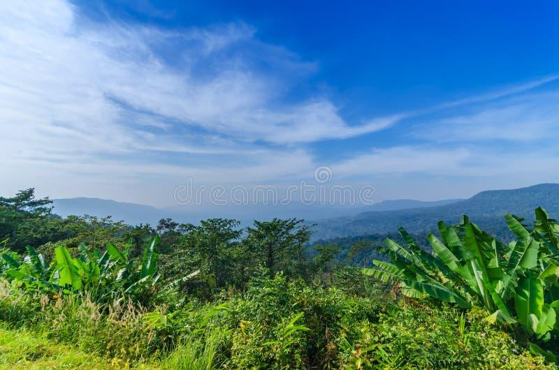 Naturligt landskap för berg royaltyfria foton