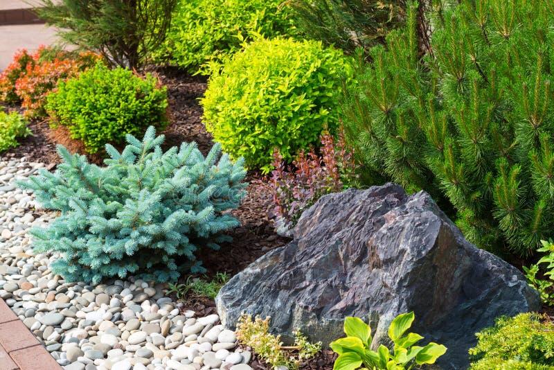 Naturligt landskap i hemträdgård royaltyfria foton