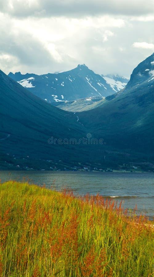 Naturligt landskap på geirangerfjorden royaltyfria foton