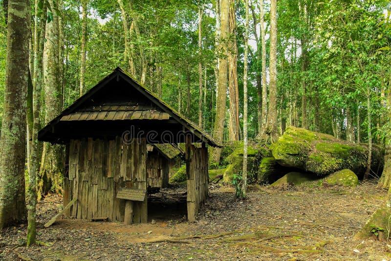 Naturligt lopp i Thailand royaltyfria foton
