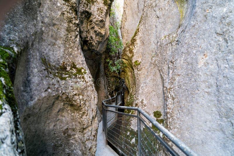 Naturligt parkera av Yeclaen, royaltyfri fotografi