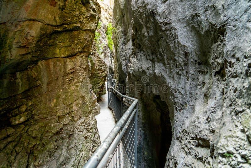 Naturligt parkera av Yeclaen, royaltyfri bild
