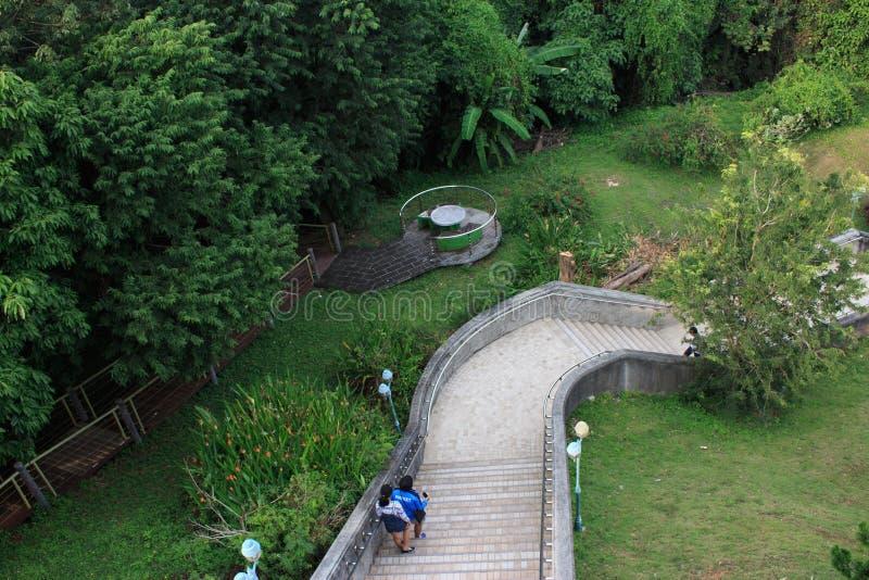 Naturligt parkera i Phuket, Thailand royaltyfria bilder